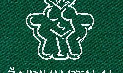 Biliardo audinys Le Cardinal 165cm pločio, žalia spalva